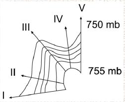 9.sinif-olcme-degerlendirme-9.soru-cografya