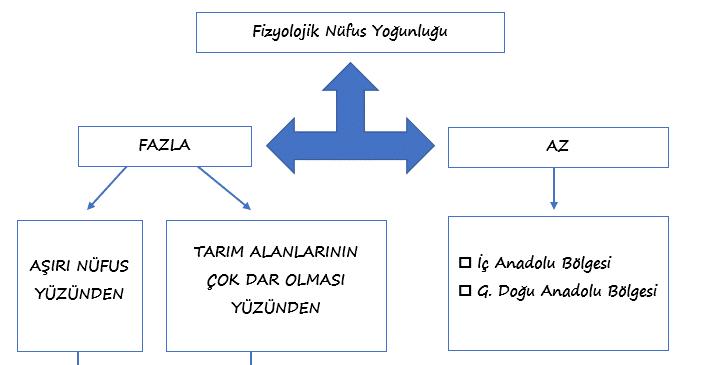 Türkiye'de Fizyolojik Nüfus Yoğunluğu 1