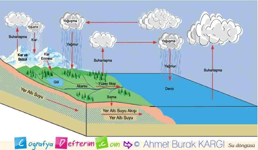 su döngüsü meb yayınları etkilnlik 1 sayfa 17