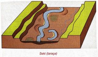 seki-taraca