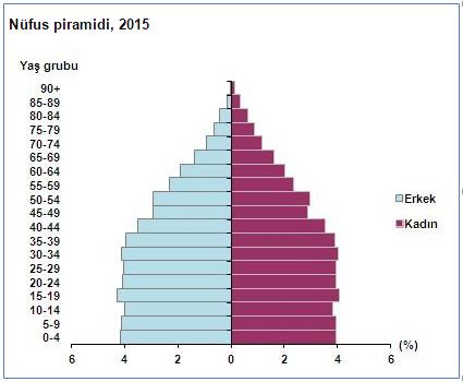 türkiye'nin 2015 nüfus piramidi
